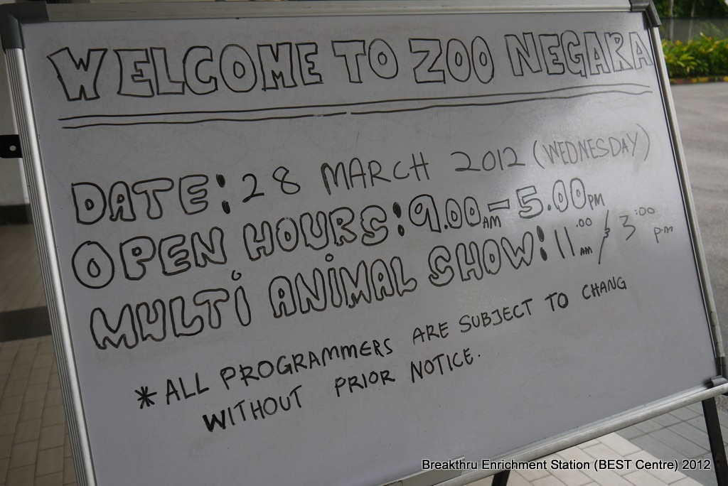 Let's go to the Zoo, there's lots of things to do